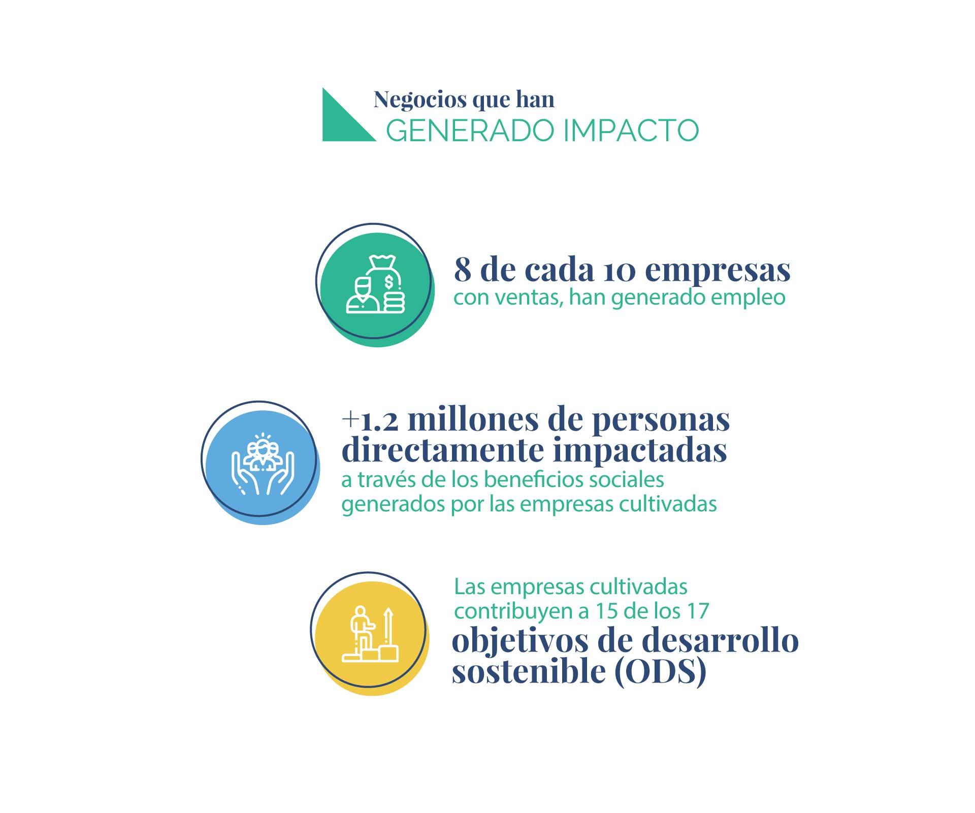 Infografia-impacto-04